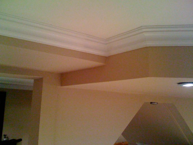 painting and crown molding, 48309